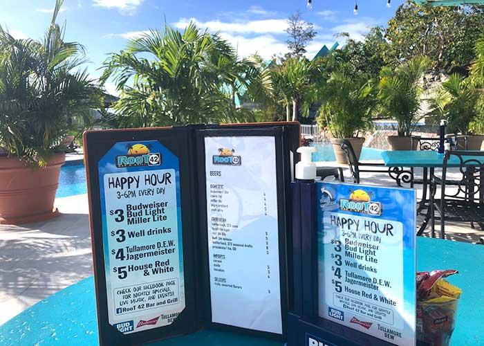 root 42 cocktail menu overlooking pool
