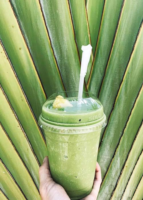 someone holds the bottom of a cup continent a green soothie in front of a bright green palm frond