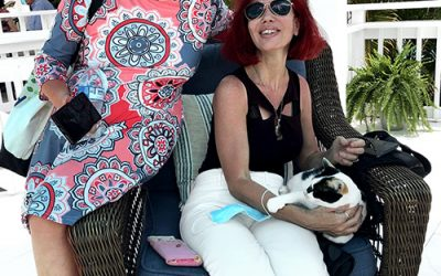 Travelers Take to Flamboyan's Friendly Felines