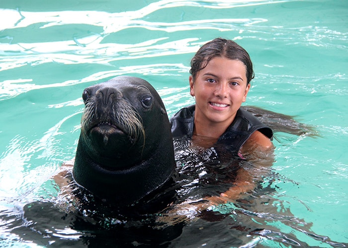 a young girl is in the caribbean ocean posing with a sea lion. she wears a life jacket